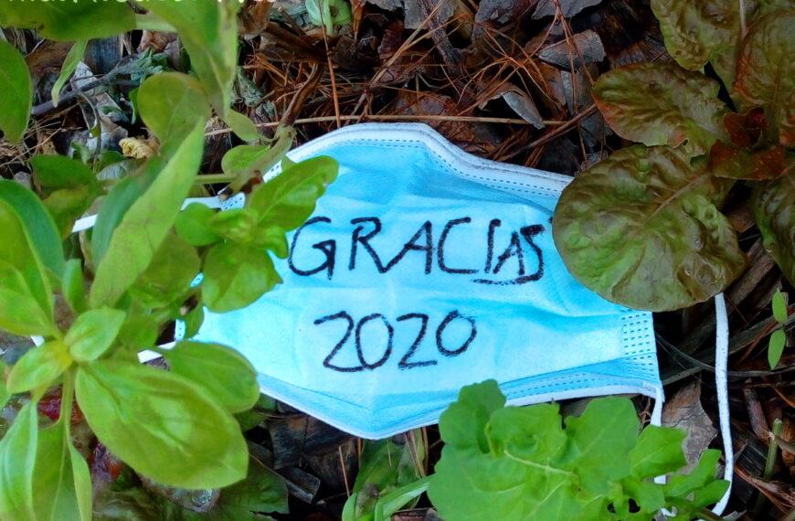 Gracias 2020 – II